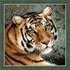 Вышивание Амурский тигр,артикул:1282