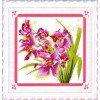 Вышивание Прекрасные орхидеи (Lovely Orchids),артикул:100205
