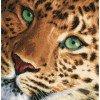 Вышивание Леопард (Leopard) ,артикул:PN-0154944