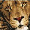 Вышивание Царь зверей (King of Animals),артикул:PN-0154979