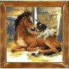 Вышивание Жеребенок и щенок,артикул:PT-0052