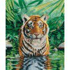 Вышивание Тигр (Tiger Pool),артикул:BK1151